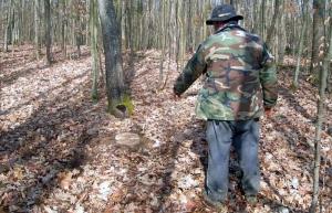 Hoții de lemne fac o nouă victimă. Angajați Romsilva, agresați și uciși!